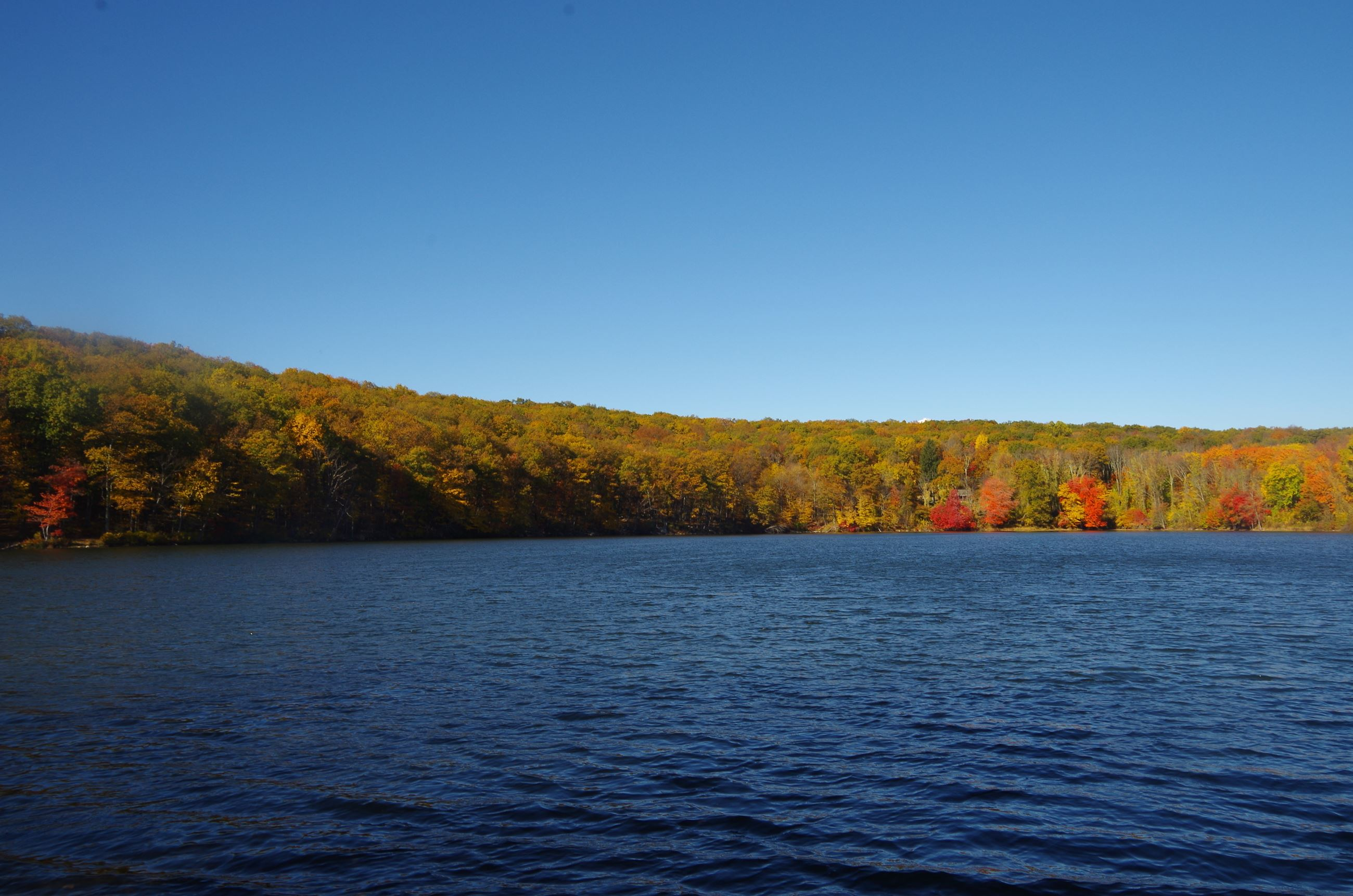 Picture from the Shores of Mt. Hope Pond