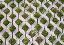Picture of grass growing through spaced block.